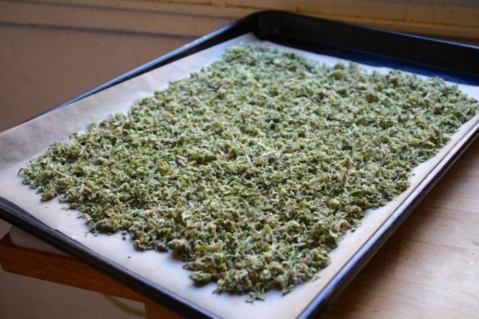 cannabis bud laid out on a tray for decarboxylation