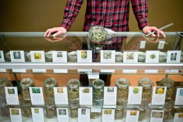 budtenders, cannabis, medical cannabis, recreational cannabis, strains, indica, sativa, risks, benefits, dispensaries, events