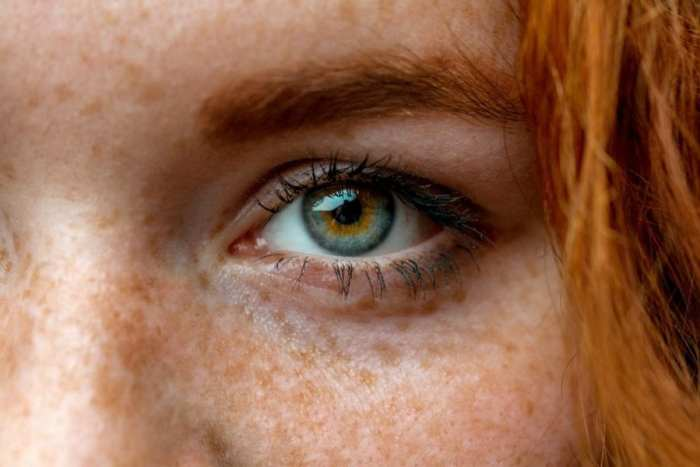 Close up of red head eye