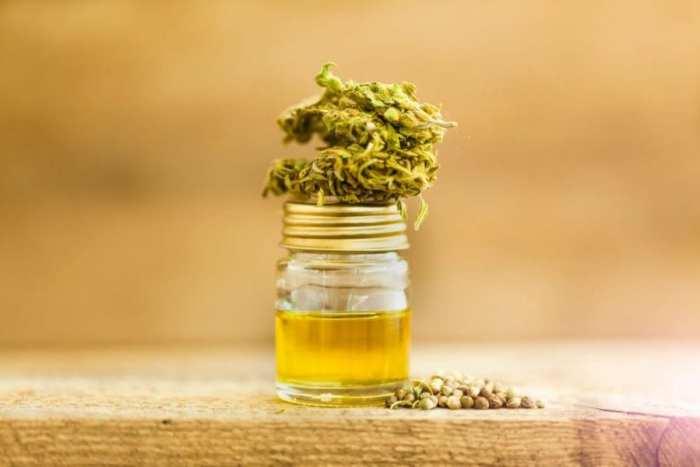 cannabis, CBD oil, FUT8, seizures, cannabinoids, Keira Mcmurdo, Sascha Abey, New Zealand, legalization