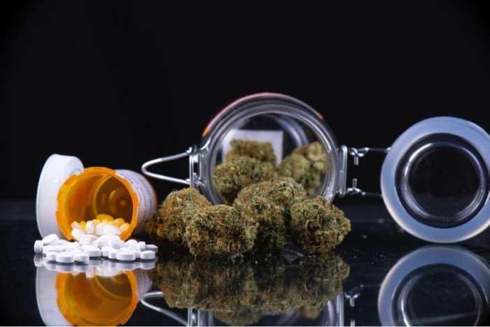 cytochrome, grapefruit, CBD, cannabinoids, cytochrome P450, medical cannabis, anxiety, antipsychotics, medication, drugs