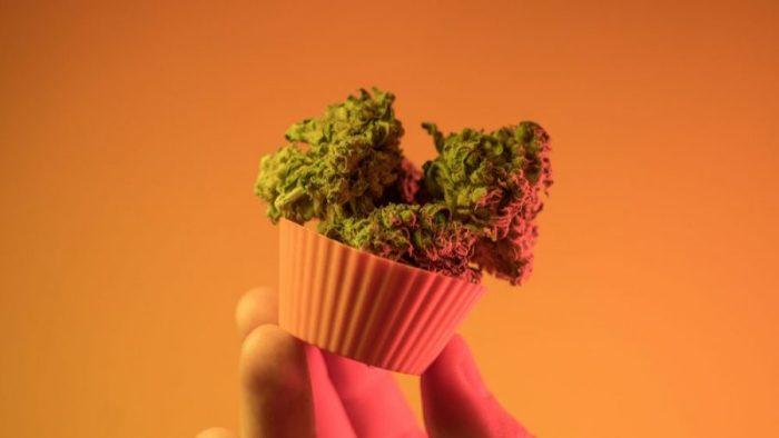 anti nausea bud in muffin cup