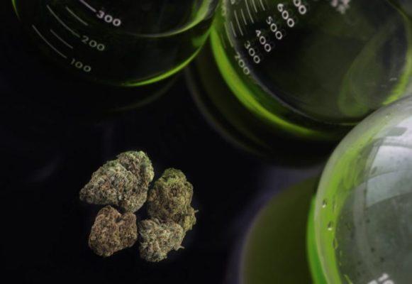 cannabis, profits, Big Pharma, biopharma, cannabinoids, health benefits, marinol, FDA, legalization, epidiolex, medical cannabis, prescription drugs