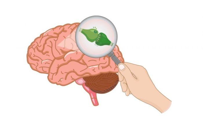 microdosing, cannabis, medical cannabis, tolerance break, tolerance, re-sensitizing, desensitized, CB receptors, cannabinoids