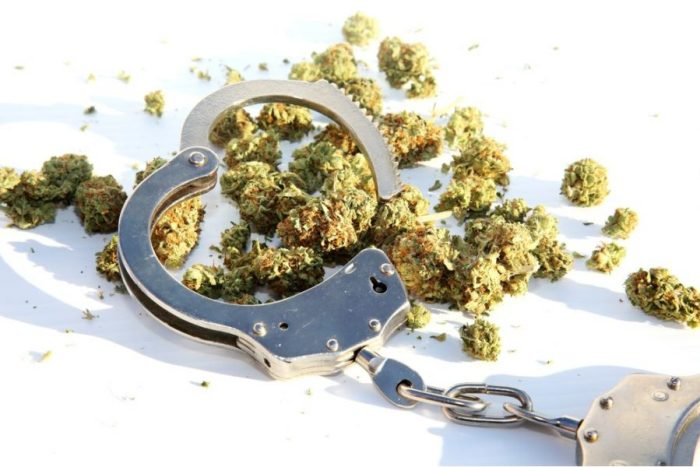 cannabis charges