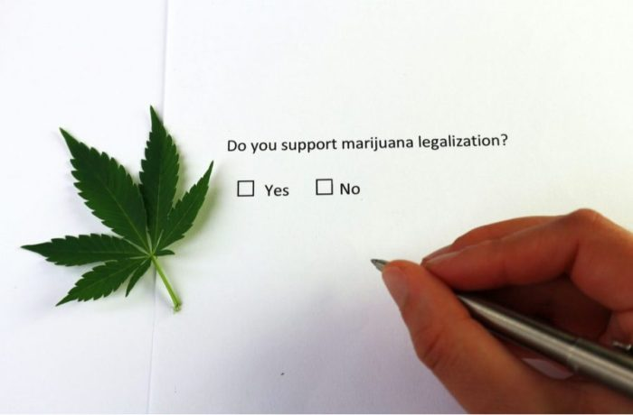 fake news, facts, cannabis, medical cannabis, recreational cannabis, false information, driving impairment, support for legalization of cannabis, USA, prohibition