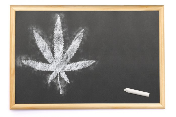 blackboard with cannabis leaf on it