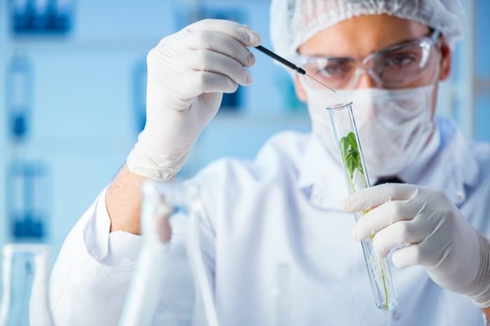 scientist with plant in test-tube