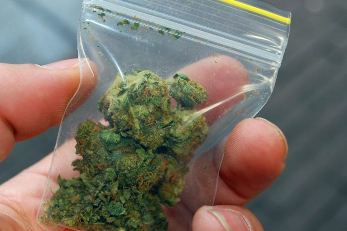 freezing cannabis would be better than this plastic baggie