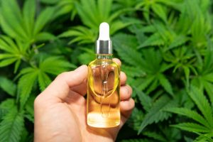 cbd cannabis oil might be i this dropper bottle held in front of cannabis leaves