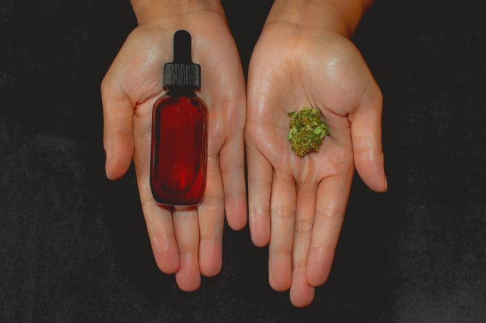 how to make cannabis oil concept represented by hands holding bud and oil