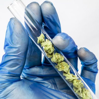 synthetic drugs developed from cannabis