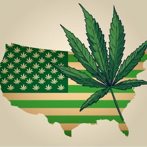 is cbd legal in my state