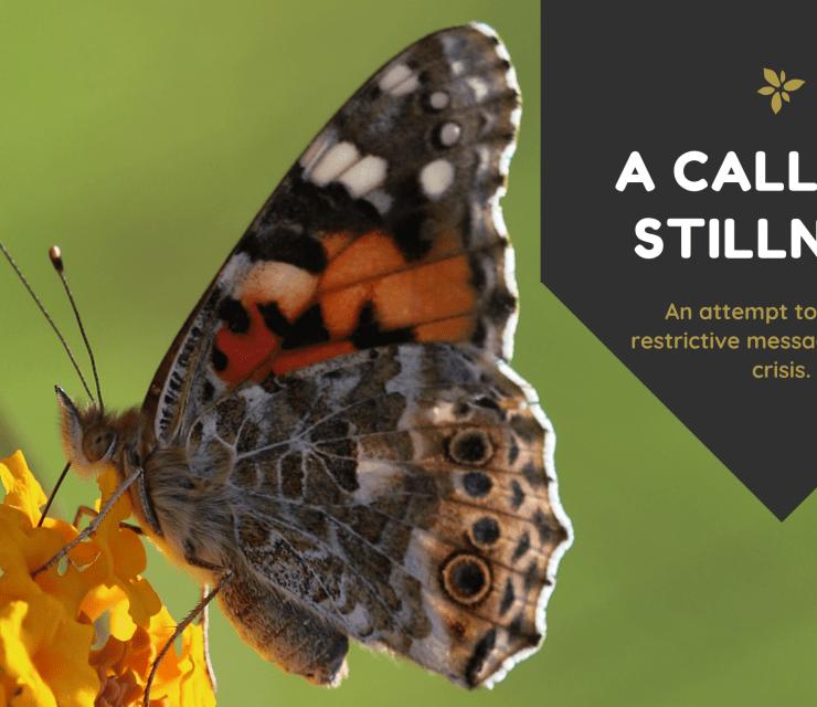 A Call for Stillness