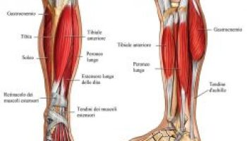 Dolore alla bassa schiena che prende le gambe: ecco perchè e cosa fare