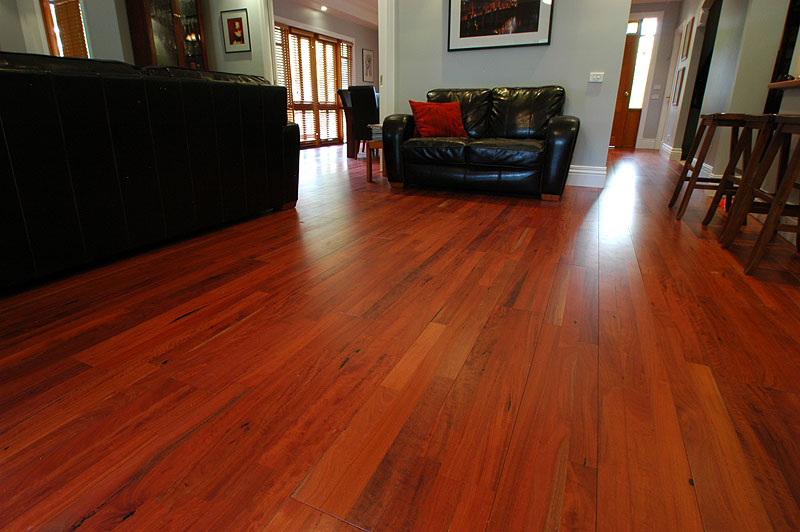Ryan  McNulty Sawmillers  Mountain Ash Spotted Gum