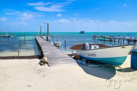 Caye Caulker, Belize. Taken January 6, 2015.