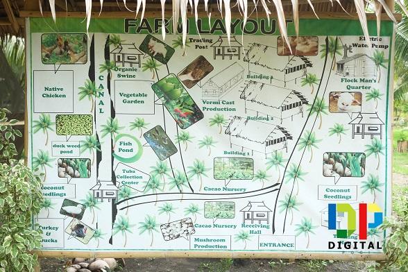 Buhian Diversified Farm