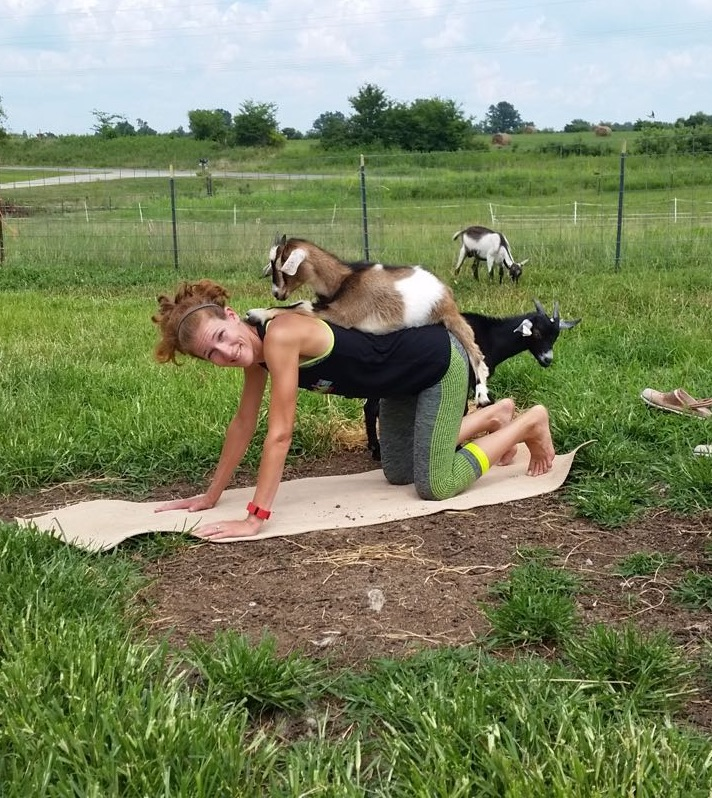 Talina does goat yoga with Blondie the goat