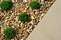 Landscaping with Rocks Instead of Mulch