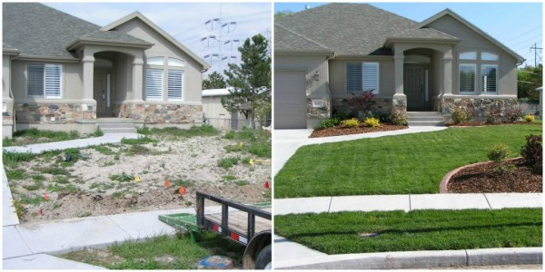 front-yard-landscaping - ryno lawn