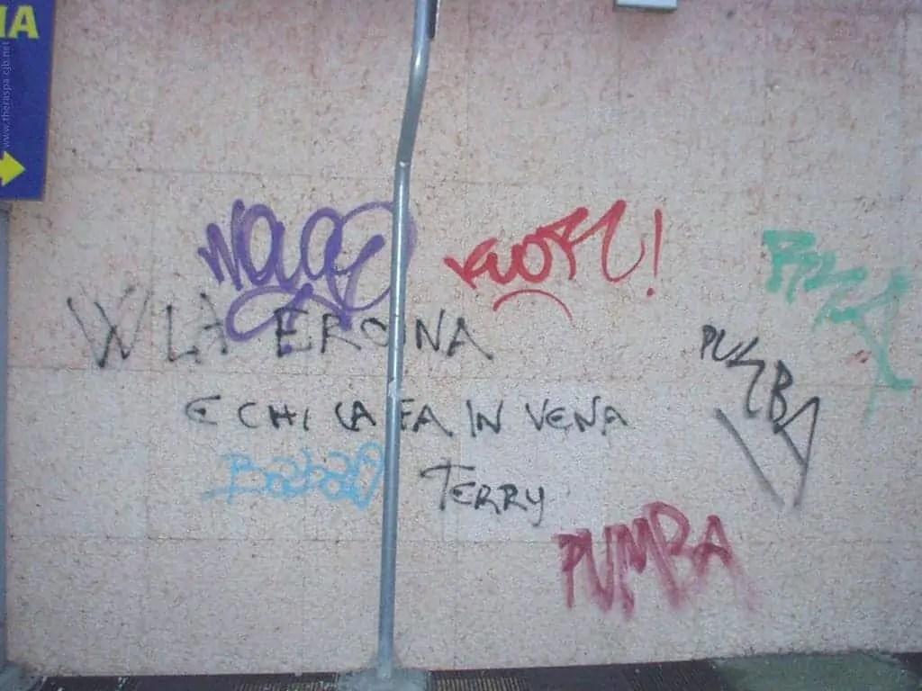 Il muro di Terry
