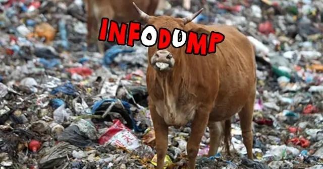 Infodump