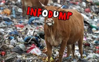 Infodump: se lo conosci lo eviti