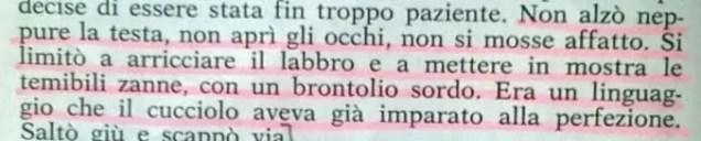 Gianni Padoan - Il Branco Della Rosa Canina - pag. 22