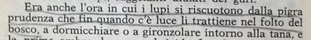 Gianni Padoan - Il Branco Della Rosa Canina - pag. 44