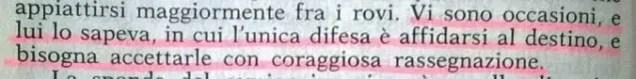 Gianni Padoan - Il Branco Della Rosa Canina - pag. 56