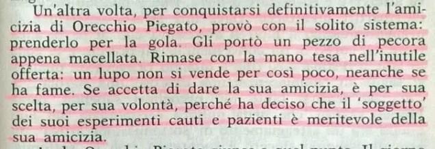 Gianni Padoan - Il Branco Della Rosa Canina - pag. 115