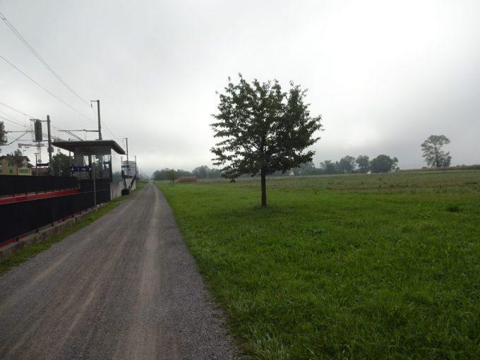 線路沿いのダート道