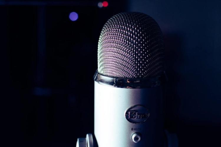 Best Work From Home Jobs Recitazione vocale