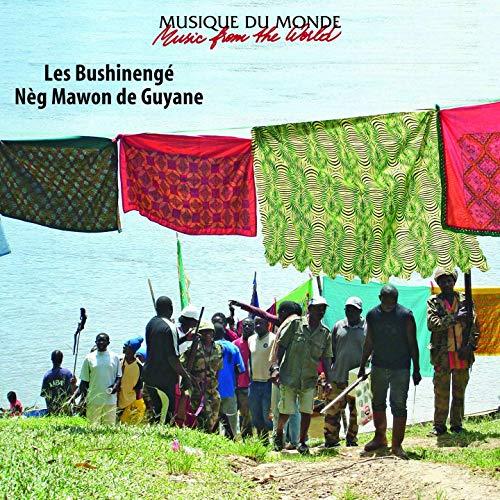 Les Bushinengé, Neg Mawon de Guyane