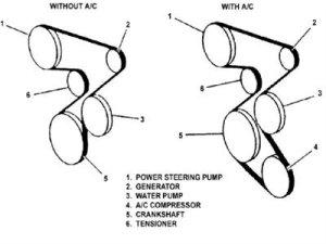 Need 1998 s10 22L Serpentine Belt Diagram  S10 Forum
