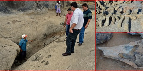 Fósseis pré-históricos são encontrados na zona rural de Itapetim