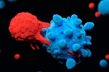 Cientistas dizem ter achado a 'cura definitiva' para o câncer