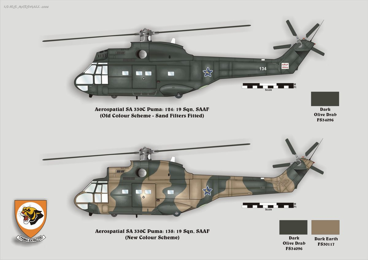 hight resolution of puma drawing william s marshall