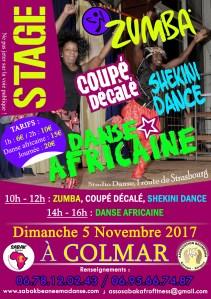 STAGE DE ZUMBA/COUPÉ DÉCALÉ/SHEKINI DANCE À COLMAR