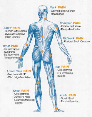 Joints of Body with Arthritis Pain