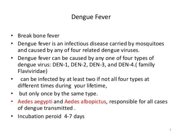 types of dengue causing mosquitos image