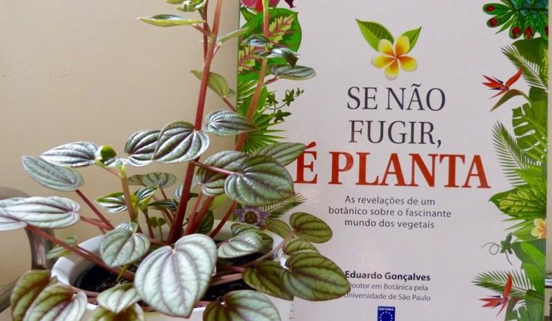 Livros sobre Plantas, Botânica e Natureza