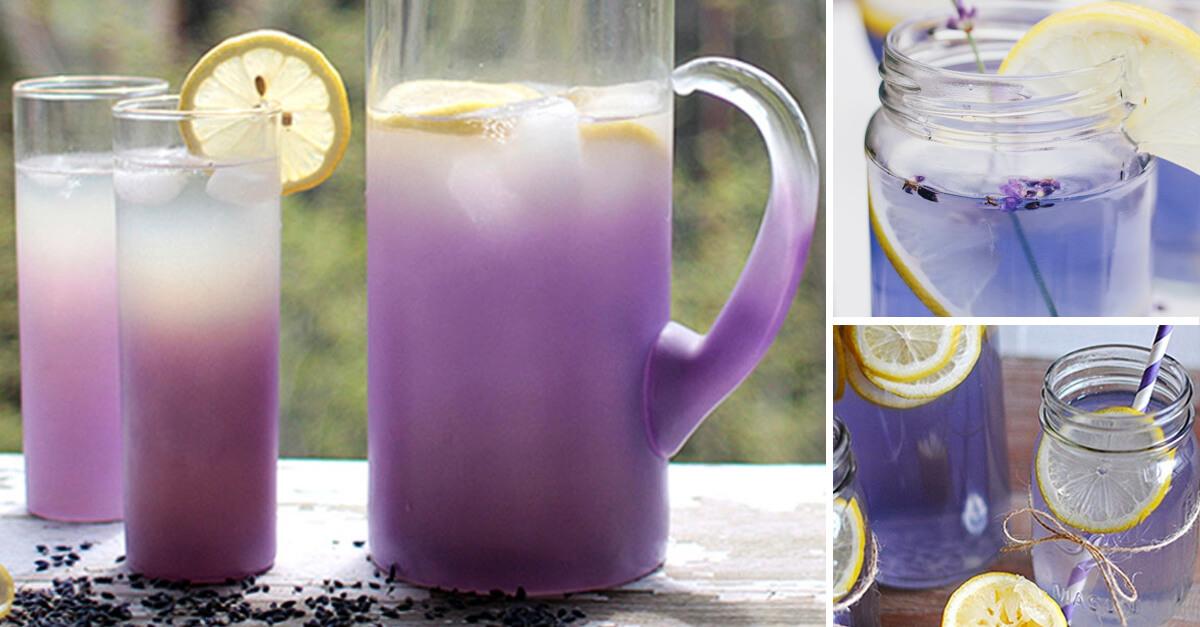 Limonada com lavanda, ajuda a se livrar de dores de cabeça e ansiedade
