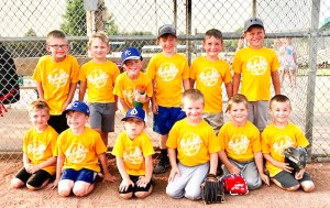 Members of the boys' Golden Whales T-ball team are FRONT ROW (L-R) Matthias Anderson, Jack Joy, Dalton Lundergard, Quade Clinton, Kip Moeller and Sonny Koch; BACK ROW (L-R) Jonah Smith, Everett Haverkamp, Kaden Turner, Eli Bellew, Patrick Georg and Kruze Moeller. Not pictured are Giovanni Martin and Coaches Cory Joy, Brian Lundergard, Kaleb Moeller, Darin Georg and Jeremy Haverkamp