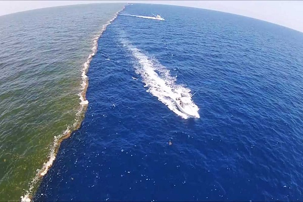 Tours of the confluence of two oceans
