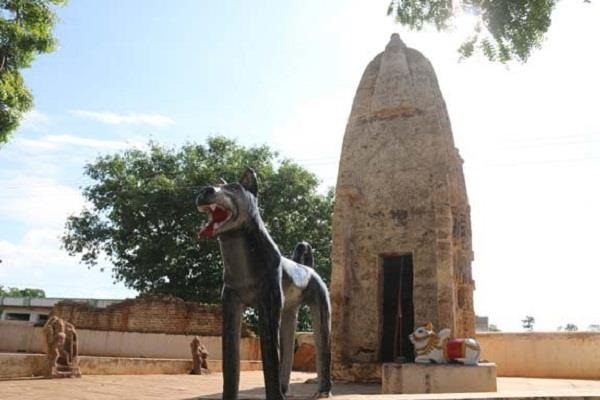 Surprisingly: Know why it is worshiped dog in this temple