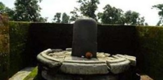 The fragrance of the Basil leaves comes from this Shivling