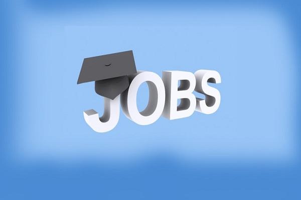 भर्तियां निजी कंपनियों को सौंपने का फैसला बेरोजगारों के साथ भद्दा मजाक : सहगल