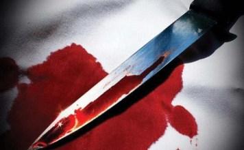 चुरू जिले में अज्ञात लोगों ने दादी पोती की गला रेत कर हत्या की